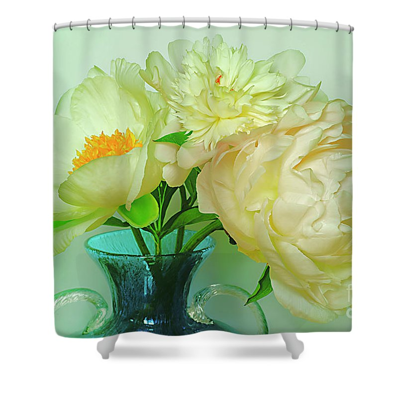 Shabby Shower Curtain featuring the photograph Beautiful Peony Flowers In Blue Vase. by Alexander Vinogradov