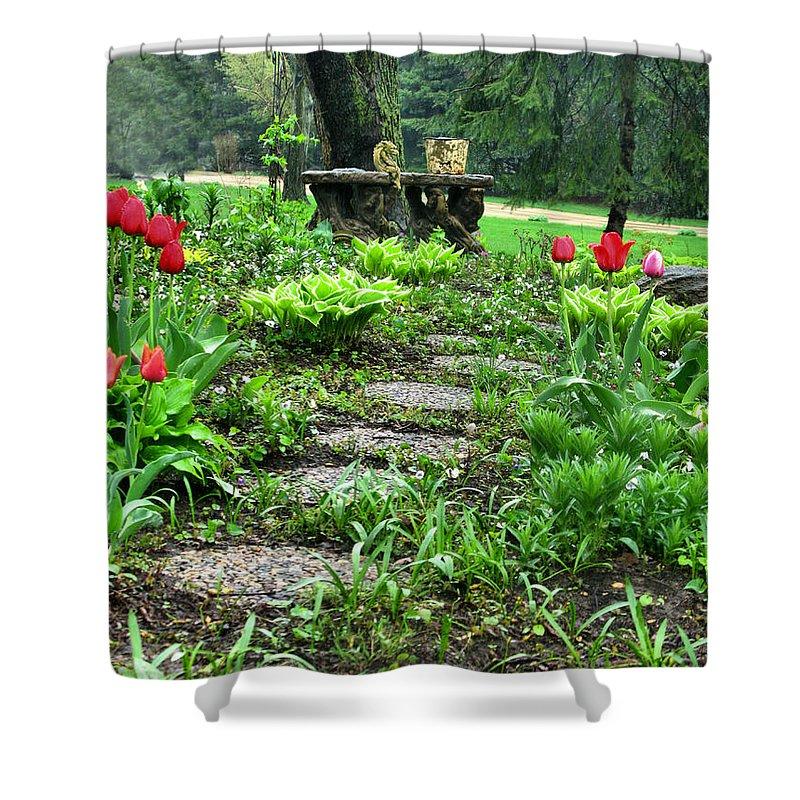 Shade Garden Shower Curtain featuring the photograph Shade Garden 2 by September Stone