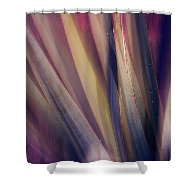 Plant Abstract Nature Blur Colors Pink Blue Yellow Geen Shower Curtain featuring the photograph Shade Of Color by Linda Sannuti