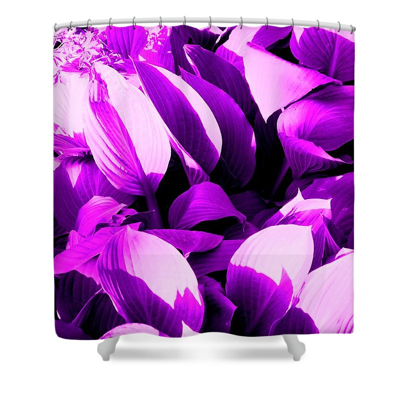 Leaves Shower Curtain featuring the photograph Shades by Ian MacDonald