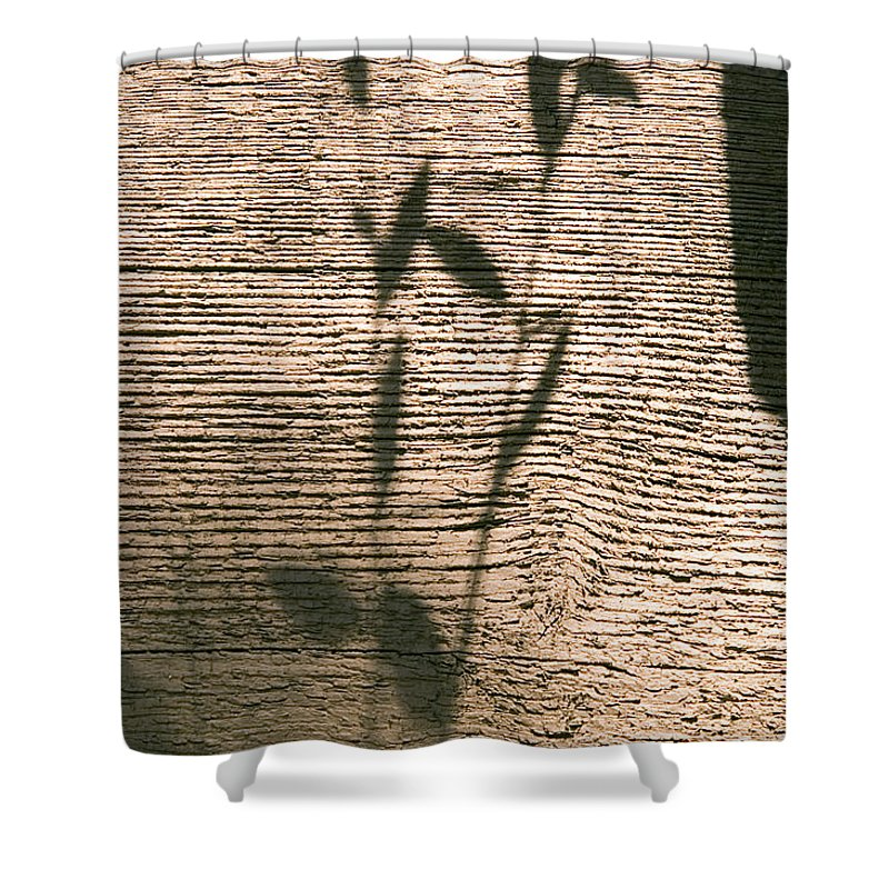 Shower Curtain featuring the photograph Shadow by Clayton Bruster