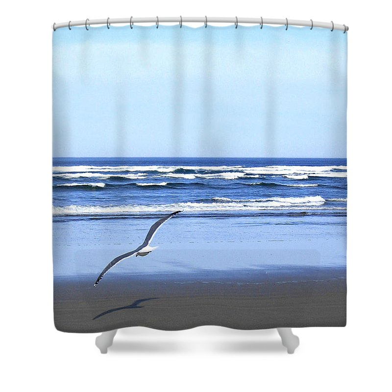 Seagull Shower Curtain featuring the photograph Shadow On The Sand by Will Borden