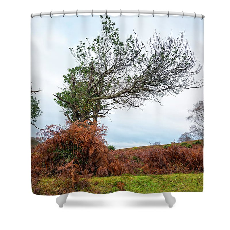 Svetlana Sewell Shower Curtain featuring the photograph Shapes Of A Nature by Svetlana Sewell