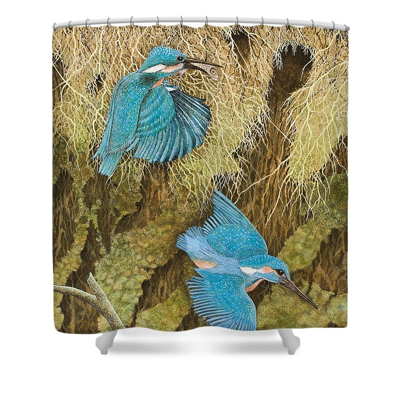 Kingfisher Shower Curtains