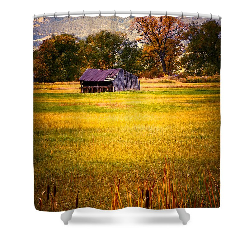 Shed Shower Curtain featuring the photograph Shed In Sunlight by Marilyn Hunt