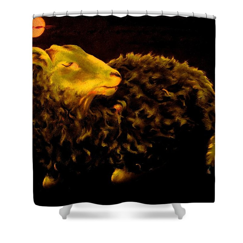 Sheep Shower Curtain featuring the painting Sheep At Night by Mark Cawood