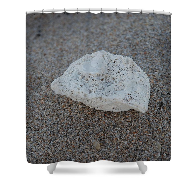 Shells Shower Curtain featuring the photograph Shell And Sand by Rob Hans