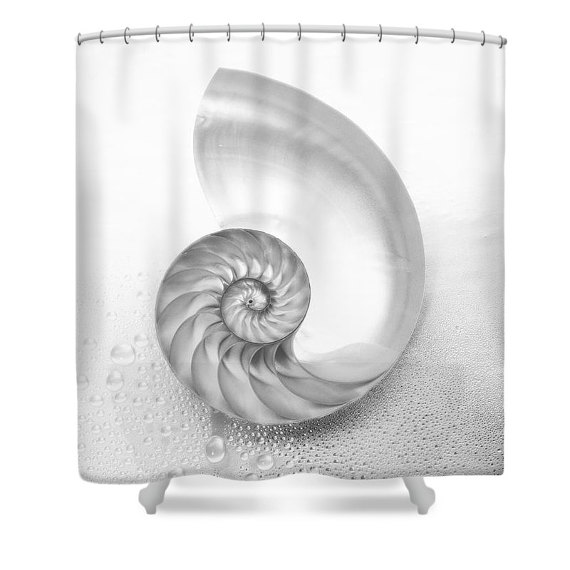 62-csm0007 Shower Curtain featuring the photograph Shell Inside - Bw by Kate Turning & Tom Gibson - Printscapes