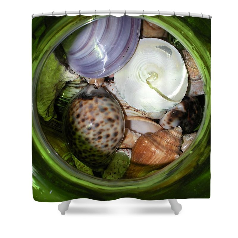 Sealife Shower Curtain featuring the photograph Shells Under Glass II by Maria Bonnier-Perez