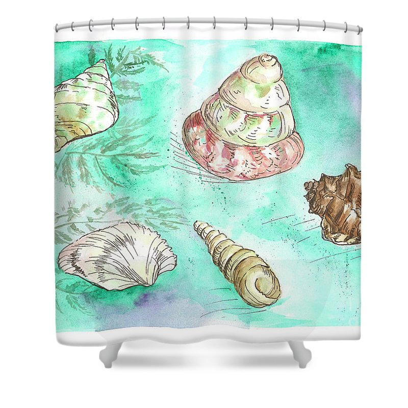 Shells Shower Curtain Featuring The Painting By Yana Sadykova