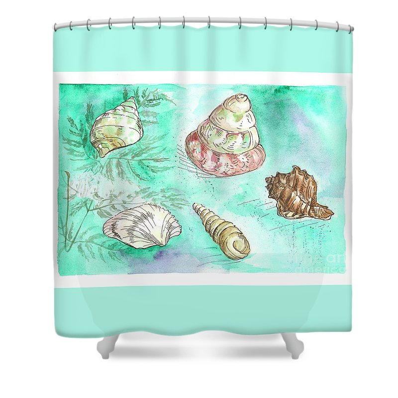 Shells Shower Curtain featuring the painting Shells by Yana Sadykova