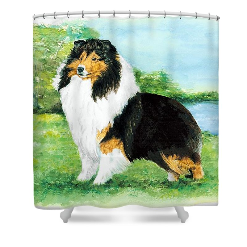 Shetland Sheepdog Shower Curtain featuring the painting Sheltie Wait by Kathleen Sepulveda