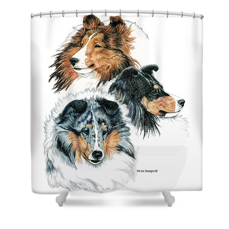 Shetland Sheepdog Shower Curtain featuring the drawing Shetland Sheepdogs by Kathleen Sepulveda