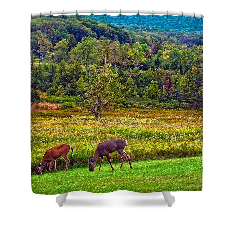Canaan Valley Shower Curtain featuring the photograph Shh... by Steve Harrington
