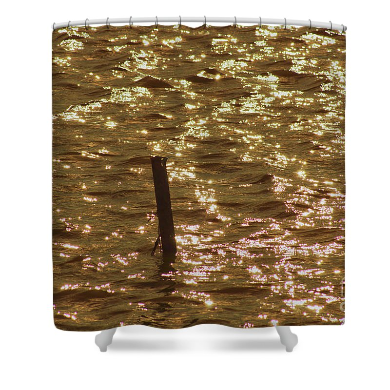 Light Shower Curtain featuring the photograph Shimmer by Cassandra Buckley