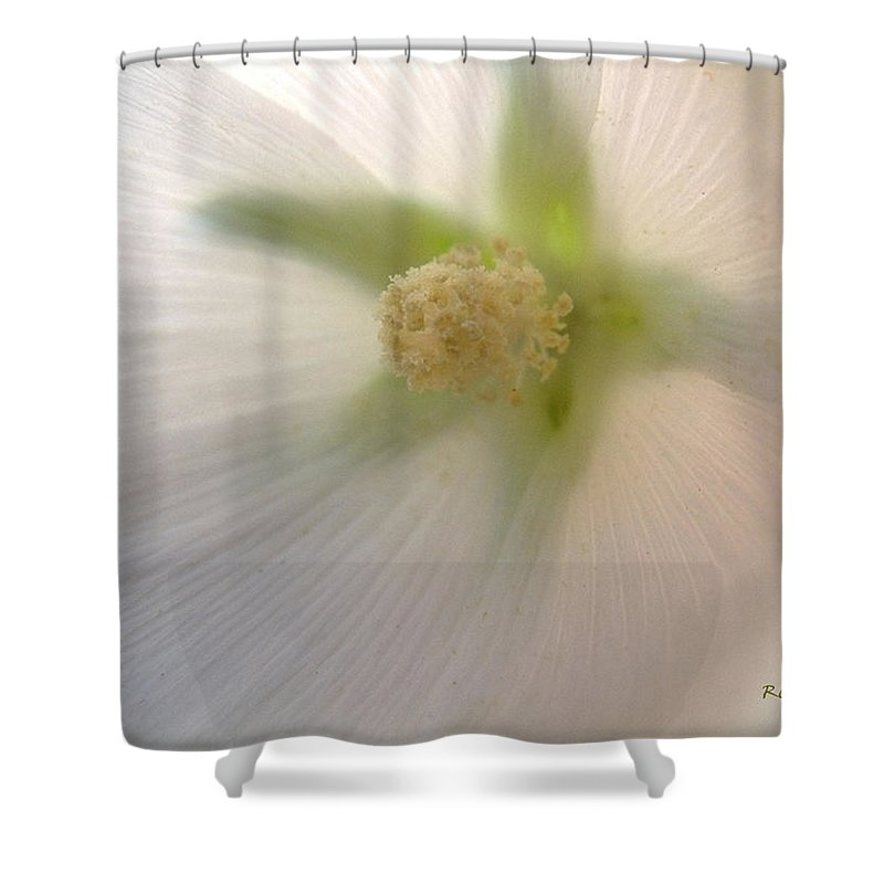 Blossom Shower Curtain featuring the photograph Shimmer by RC DeWinter