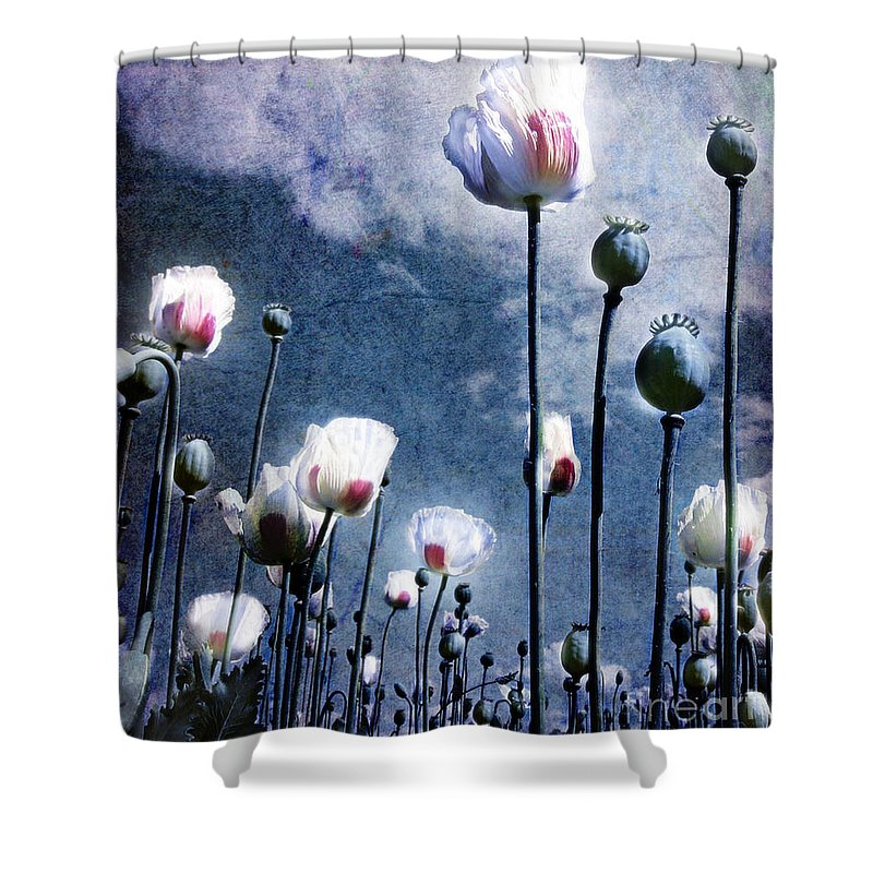 Flowers Shower Curtain featuring the photograph Shine Through by Jacky Gerritsen