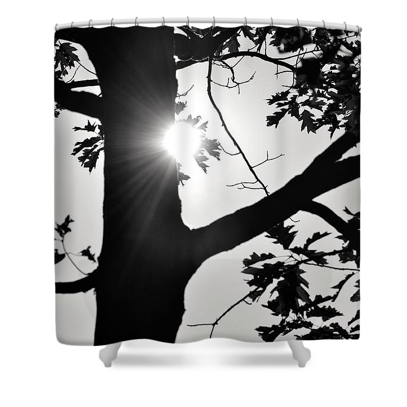 Black And White Shower Curtain featuring the photograph Shine Through by Traci Cottingham