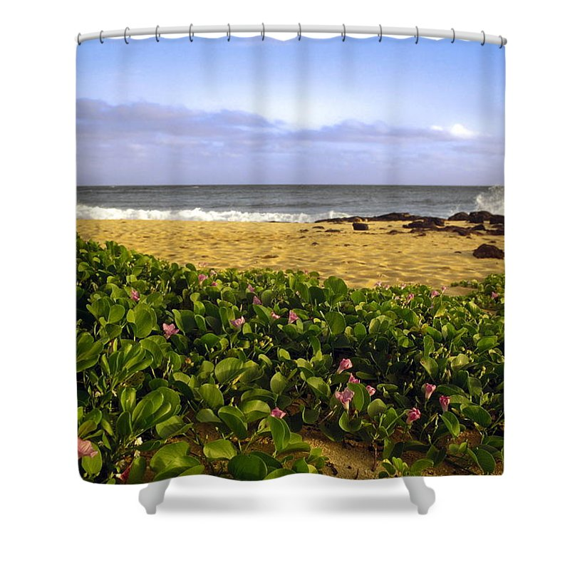 Shipwreck Beach Shower Curtain featuring the photograph Shipwreck Beach by Sally Weigand