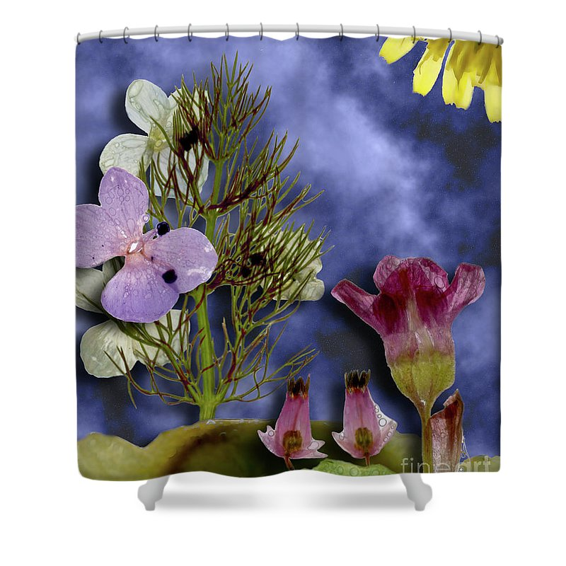 Flowers Shower Curtain featuring the photograph 10190 Ghost Of Lost Souls - Shoo by Colin Hunt