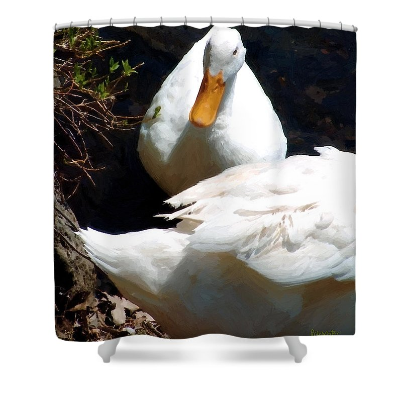 Duck Shower Curtain featuring the painting Should I by RC DeWinter