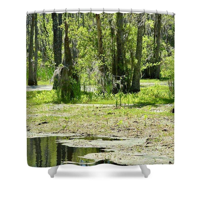 Shower Curtain featuring the photograph Shreks Swamp by Kandi Neussendorfer