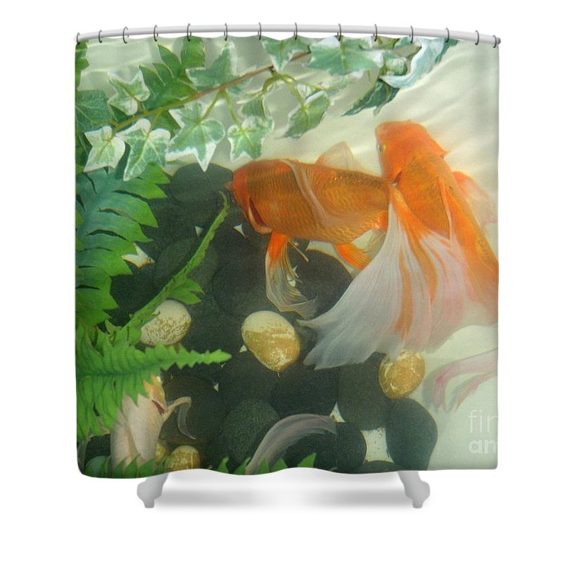 Orange Shower Curtain featuring the photograph Siamese Fighting Fish 2 by Mary Deal
