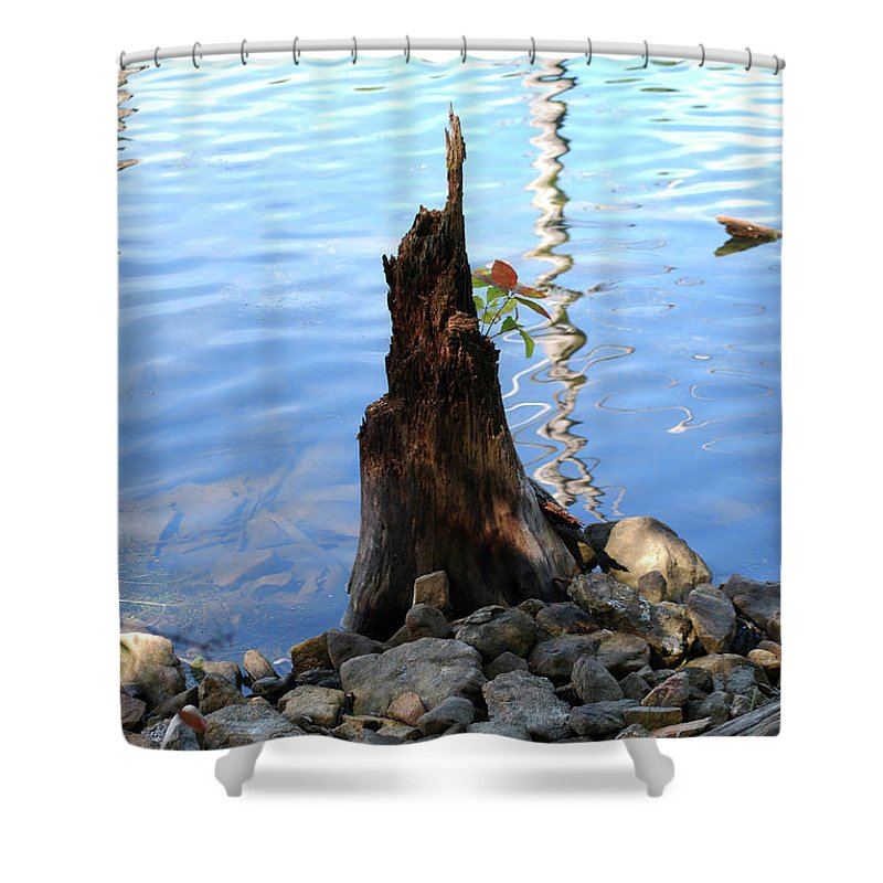 Water Shower Curtain featuring the photograph Sign Of Life by Lori Tambakis
