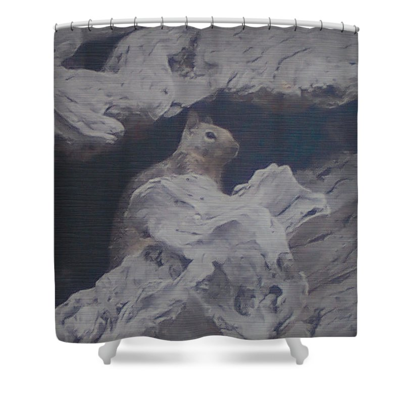 Squirrel Shower Curtain featuring the photograph Silent Observer by Pharris Art
