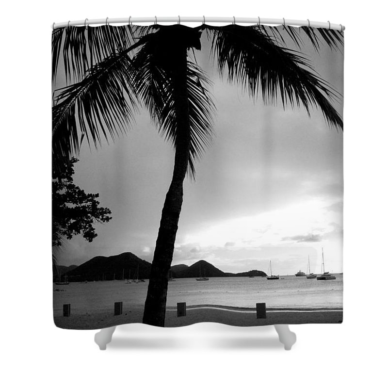 Palm Tree Shower Curtain featuring the photograph Silhouette by Angela Niesz