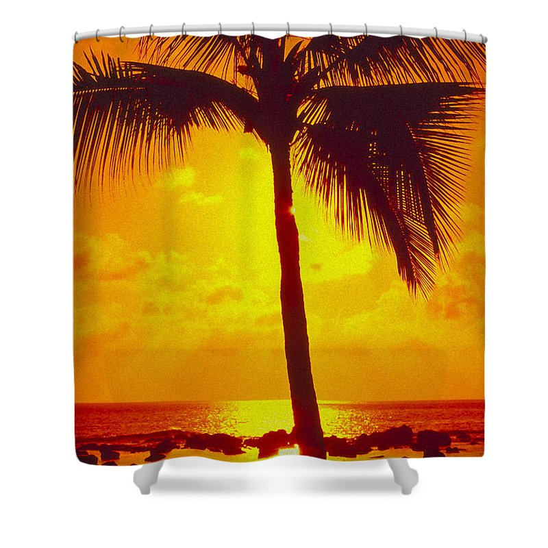 Bright Shower Curtain featuring the photograph Silhouetted Palm by Ron Dahlquist - Printscapes