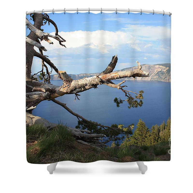 Crater Lake Shower Curtain featuring the photograph Silvery Tree Over Crater Lake by Carol Groenen