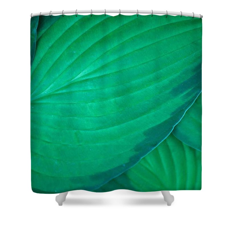 Hasta Shower Curtain featuring the photograph Simply Hasta by Laurie Paci