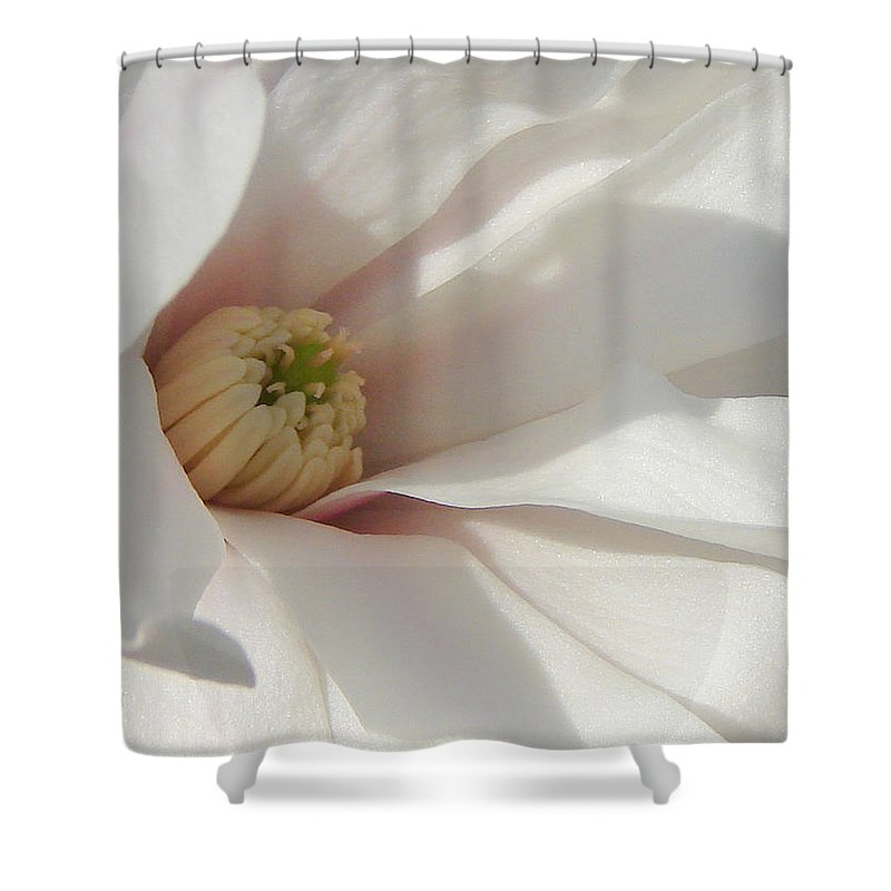 Shower Curtain featuring the photograph Simply White by Luciana Seymour