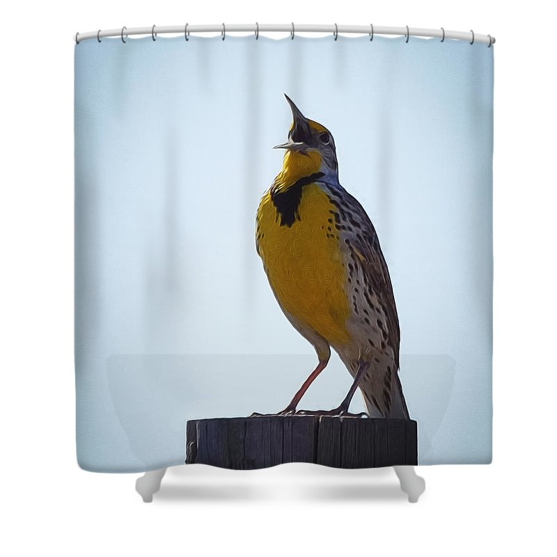 Meadowlark Shower Curtains