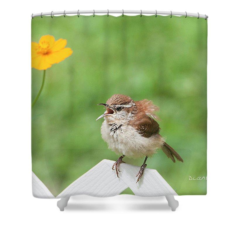 Singing Wren Shower Curtain featuring the photograph Singing Wren by Diane Giurco