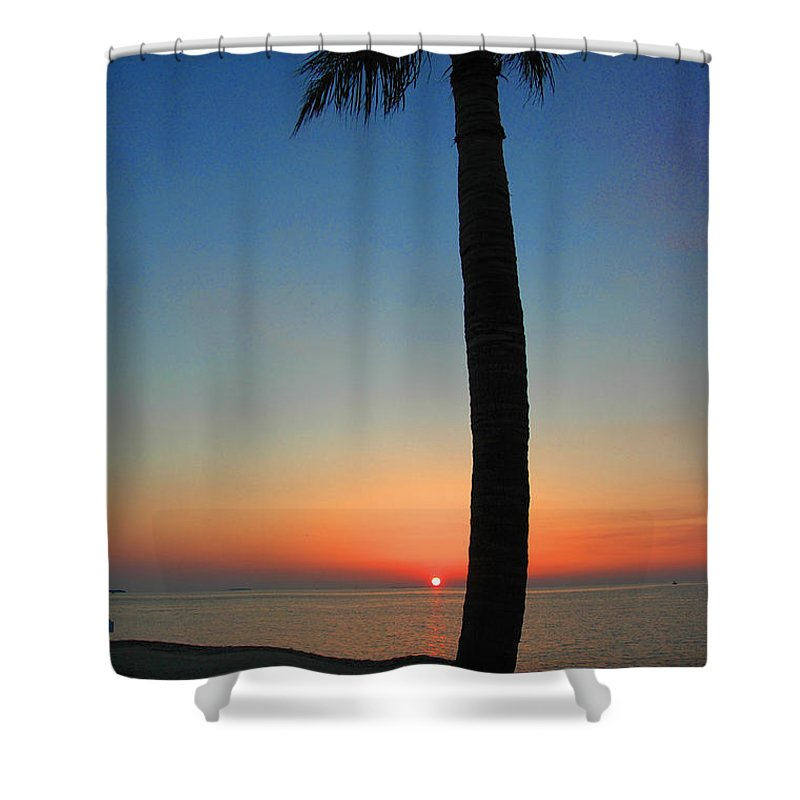 Photography Shower Curtain featuring the photograph Single Palm And Sunset by Susanne Van Hulst