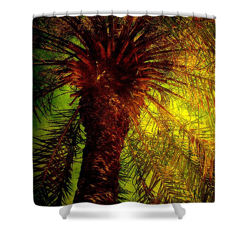 Palm Shower Curtain featuring the photograph Single Palm by Susanne Van Hulst