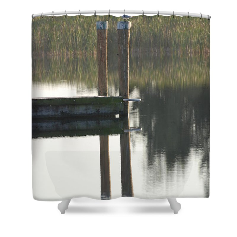 Grass Shower Curtain featuring the photograph Sitting Bird by Rob Hans