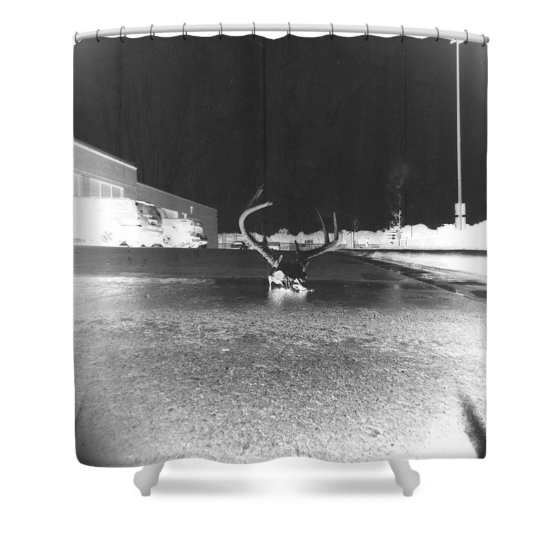 Pinhole Shower Curtain featuring the photograph Skull by Alice Kelsey