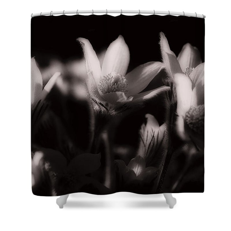 Flowers Shower Curtain featuring the photograph Sleepy Flowers by Marilyn Hunt