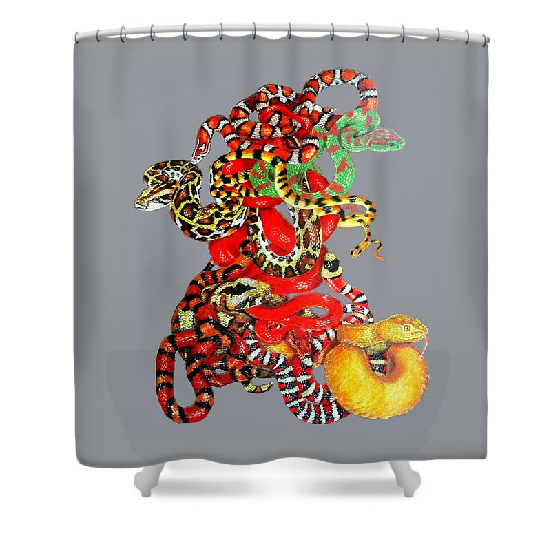 Reptile Shower Curtain featuring the drawing Slither by Barbara Keith