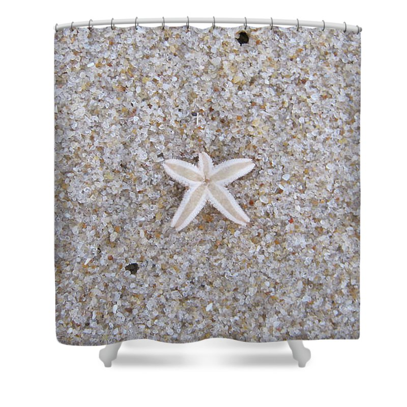 Sylt Shower Curtain featuring the photograph Small Star Fish by Heidi Sieber