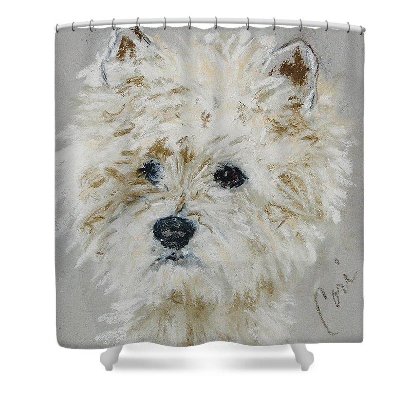 Westy Shower Curtain featuring the drawing Small Wonders by Cori Solomon