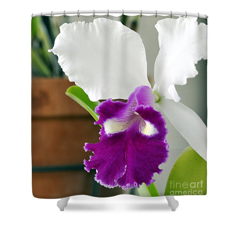 Clay Shower Curtain featuring the photograph Smile by Clayton Bruster