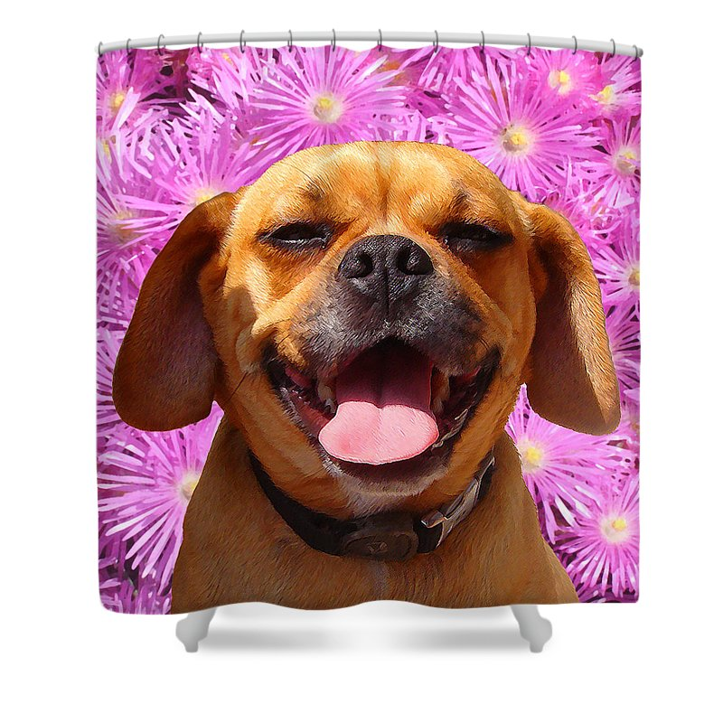 Animal Shower Curtain featuring the painting Smiling Pug by Amy Vangsgard