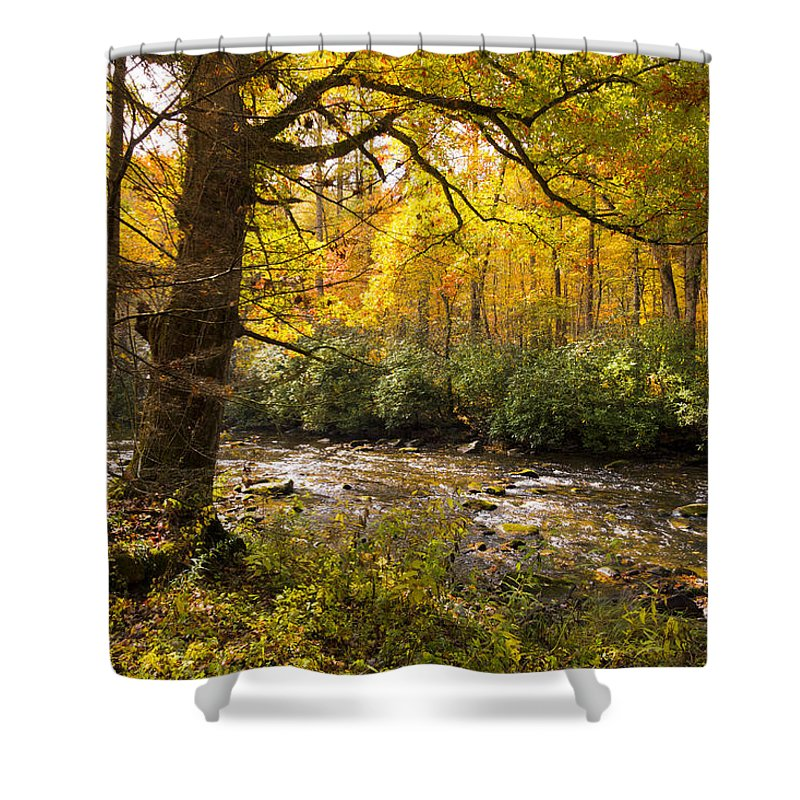 Appalachia Shower Curtain featuring the photograph Smoky Autumn by Debra and Dave Vanderlaan