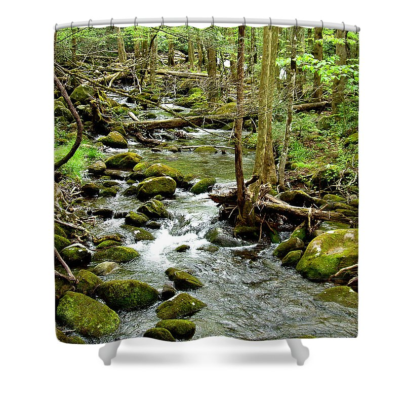 Smoky Mountains Shower Curtain featuring the photograph Smoky Mountain Stream 1 by Nancy Mueller