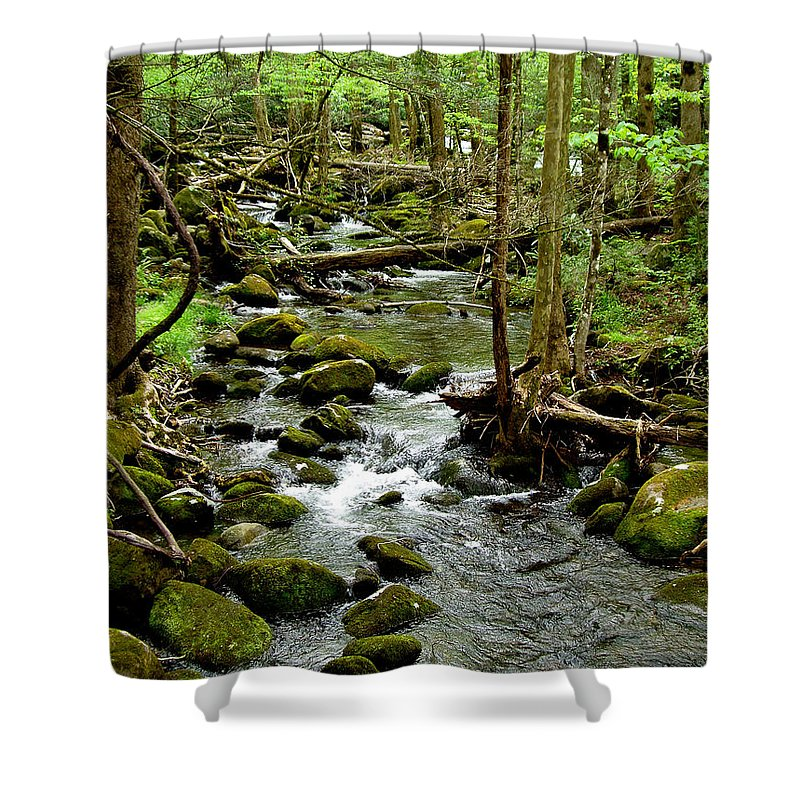 River Shower Curtain featuring the photograph Smoky Mountain Stream 2 by Nancy Mueller