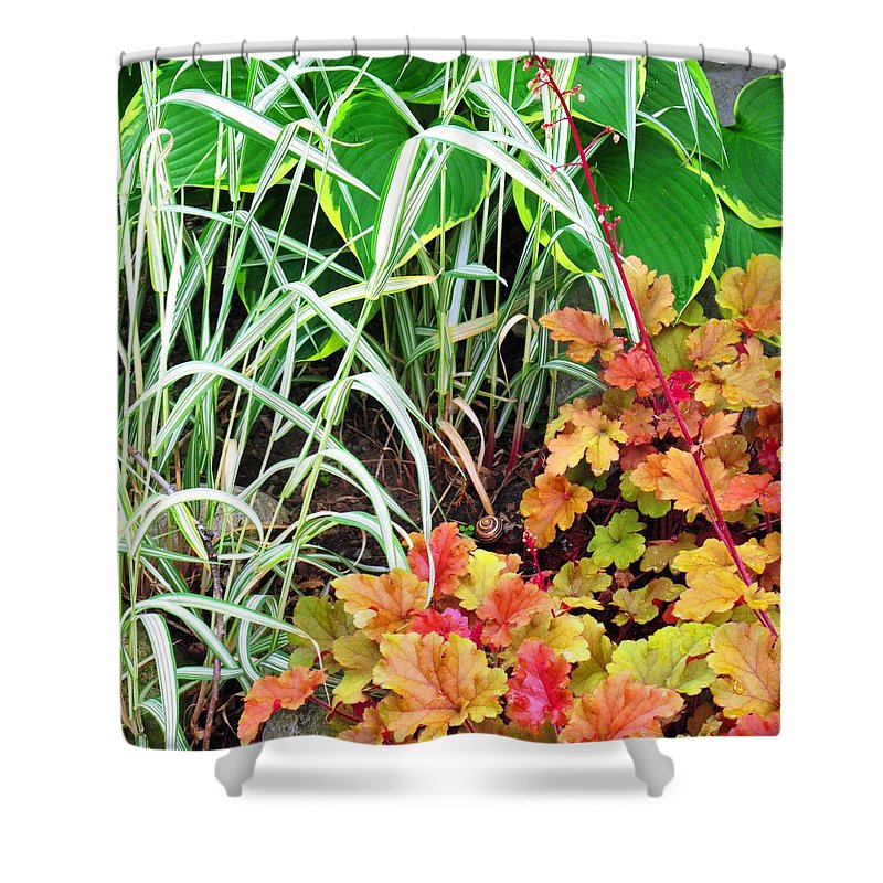 Garden Shower Curtain featuring the photograph Snail In A Rich Composition by Ian MacDonald